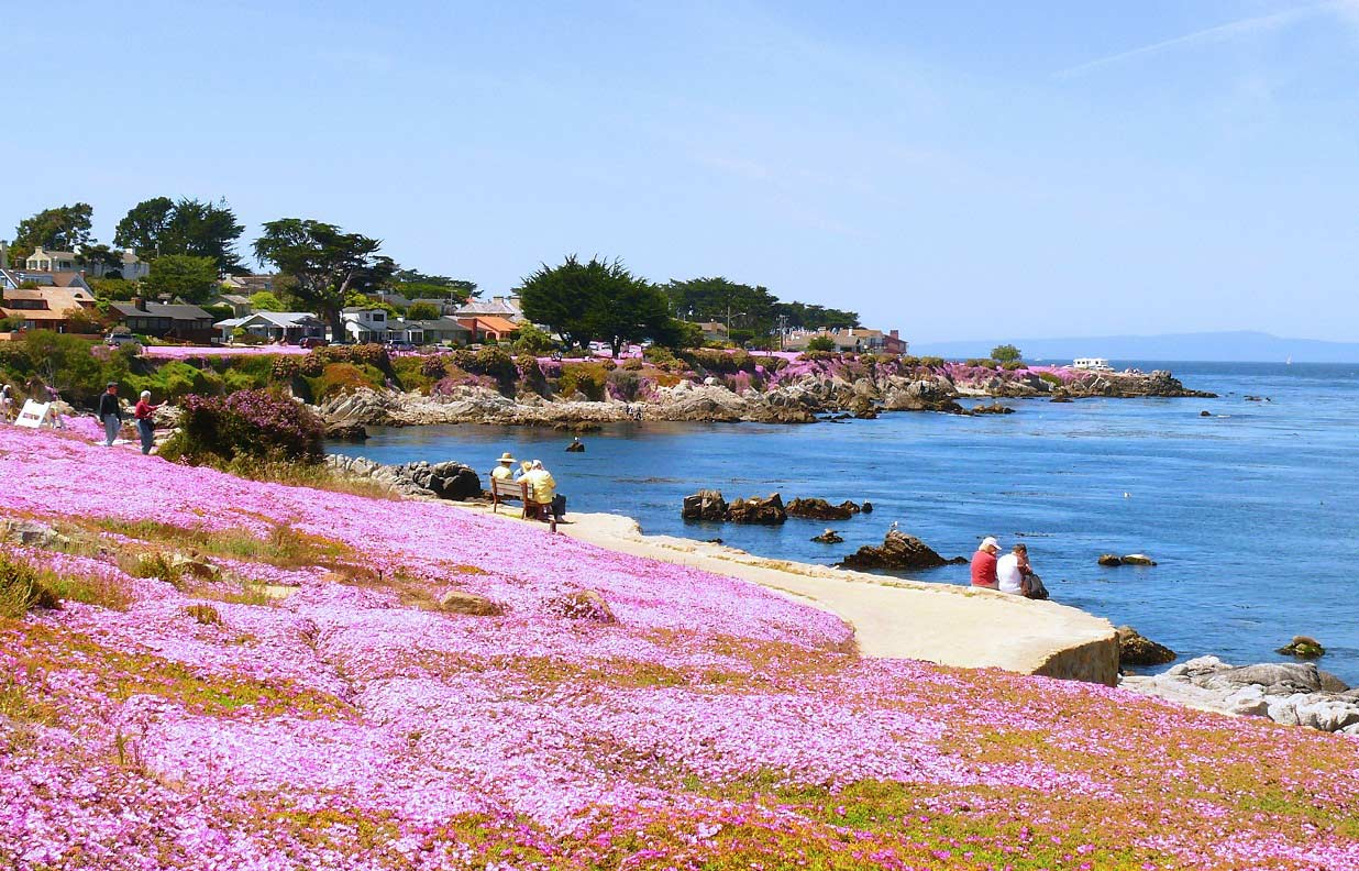 Welcome to Pacific Grove, California