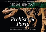 Night Owl Fundraiser