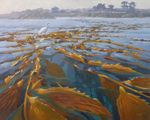 Opening Reception - Magnificent Migrations: A Journey Through Central California