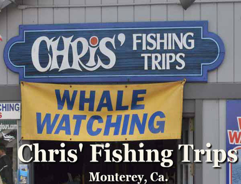 Chris' Fishing Trips, Inc.