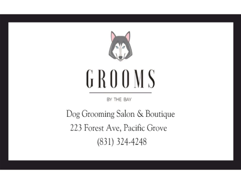 Grooms by the Bay