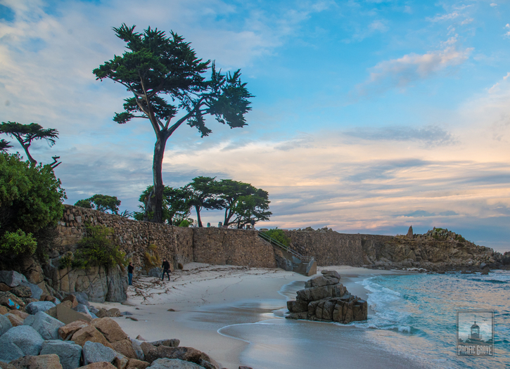 Zoom Backgrounds of Pacific Grove
