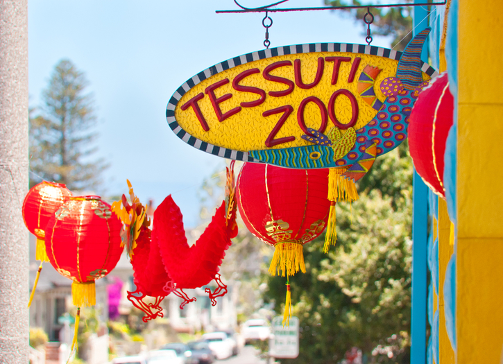 Tessuti Zoo: A Menagerie of Fun and Color in Pacific Grove