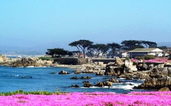 Hotels In Pacific Grove Ca